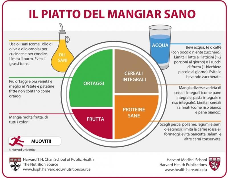 Italian_HEP_Dec2015-1024x801-e1496862543273