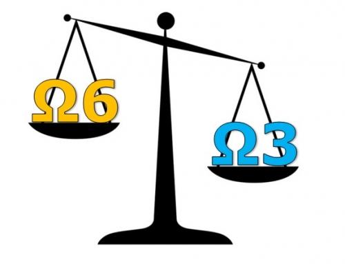 Il giusto equilibrio tra omega-3 e omega-6